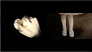 """Pera Müzesi'nde """"Çiftdüşün: Çiftgörü"""" Sergisi Kapsamında Sanatçı Söyleşisi"""