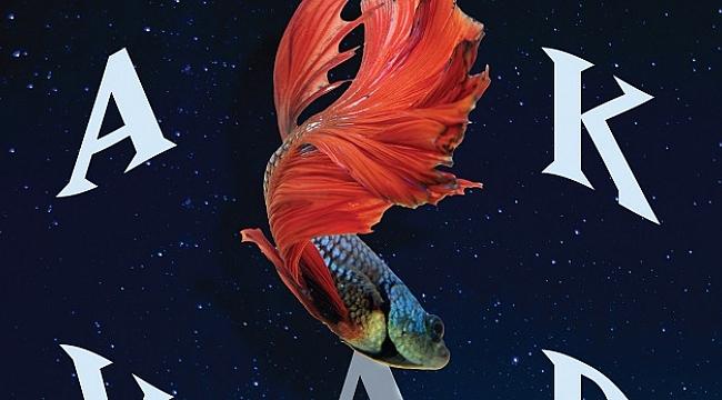 David Vann'dan çarpıcı bir roman: Akvaryum