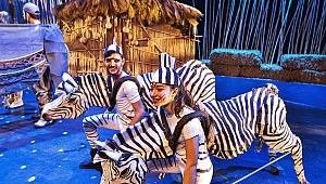 Animals Musical, 110 kişilik dev kadrosuyla İstanbul'da