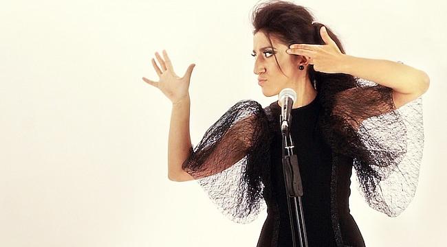 Hediye Güven'den yeni albüm: On Bir Mevsim