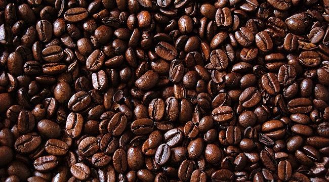 Topraktan fincana kahvenin serüveni ele alınacak