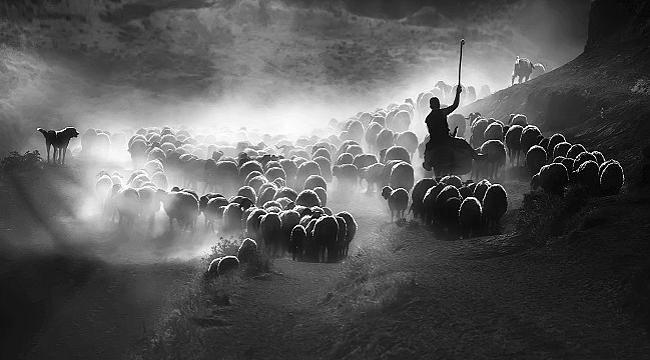 Dünya Fotoğraf Ödülleri'nde Türkiye Ulusal Ödülü'nü kazanan isim belli oldu