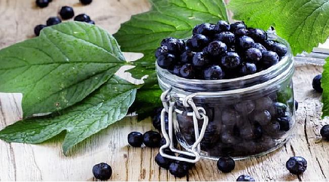 Aronya (aronia tea) bitki çayının fiyatı, faydaları ve zararları