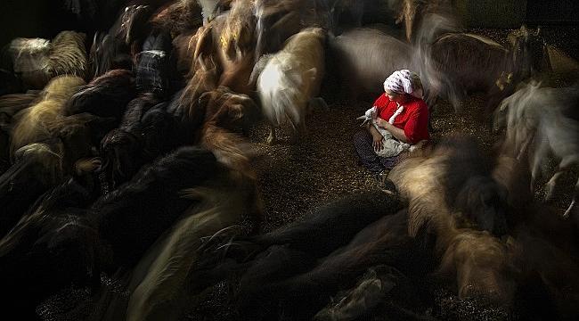 Kadın fotoğrafçılardan 'Hayata Dair' kareler