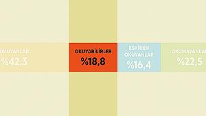 Türkiye'de okur olma potansiyeli olan yetişkinler kim?