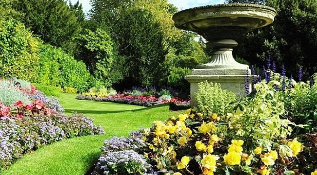 Güney Botanik Bahçe Bakım Hizmetleri